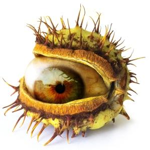 Eyethorn