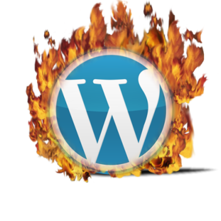 Wordpress logo en flamme !